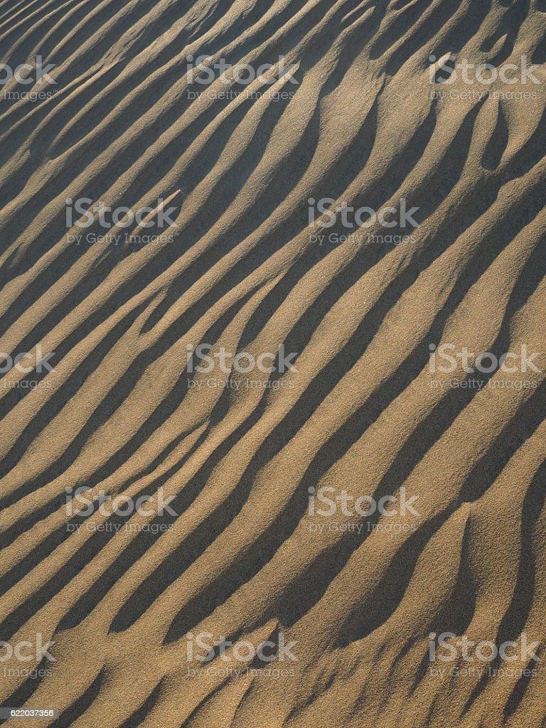 Sand patterns in dunes of Maspalomas stock photo