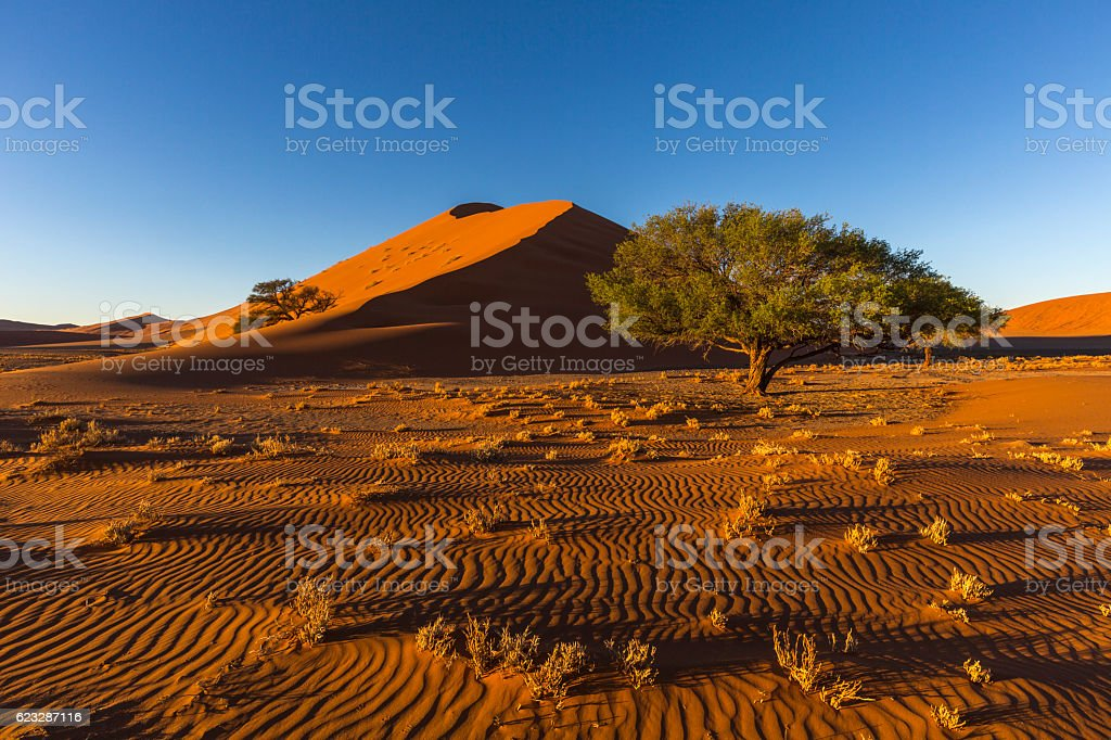 Sand patterns in early morning light stock photo