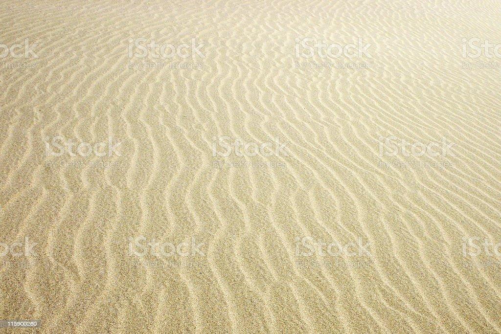 Sand Ripples royalty-free stock photo