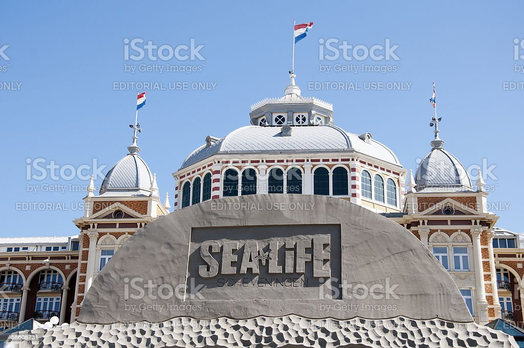 Sand Sculpture at the beach of Scheveningen stock photo