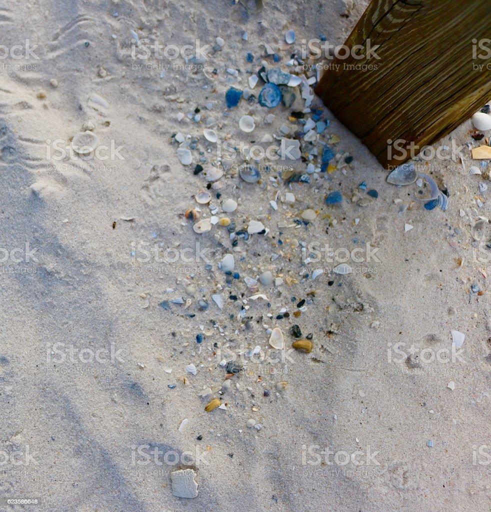 Sand & Shells stock photo