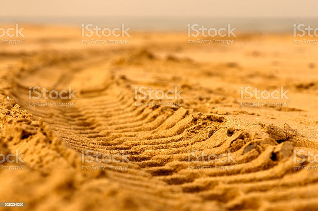 Sand tire track stock photo
