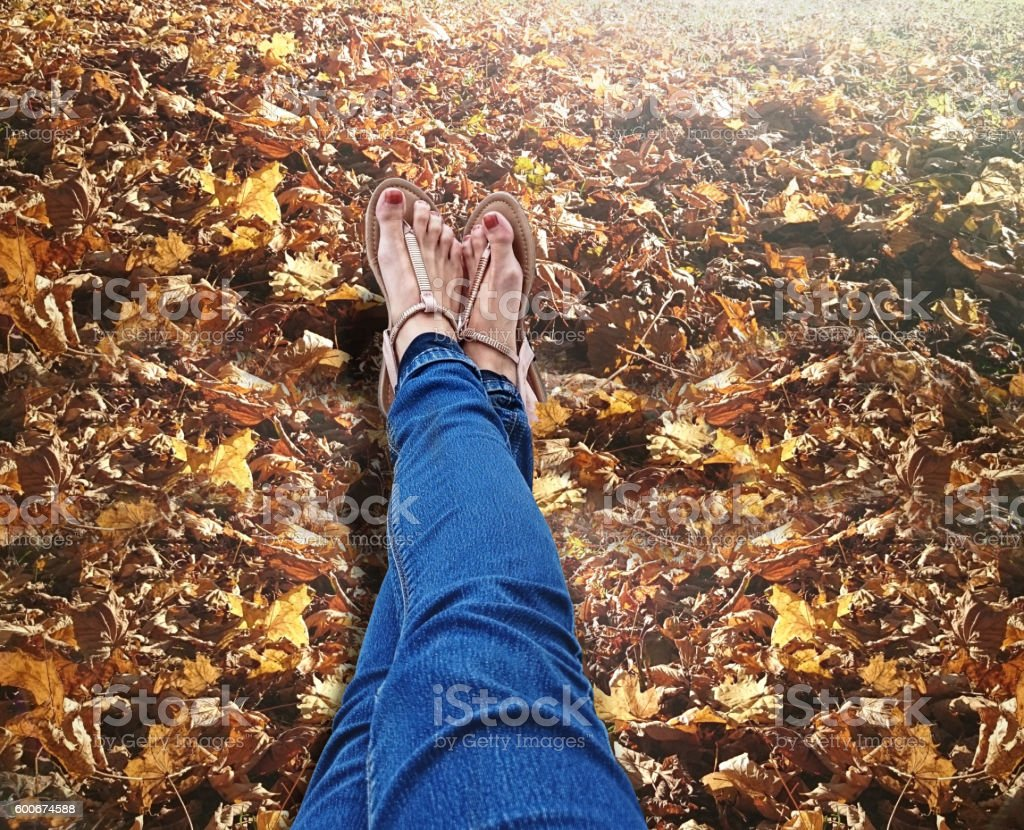 Sandals on autumn leaves stock photo