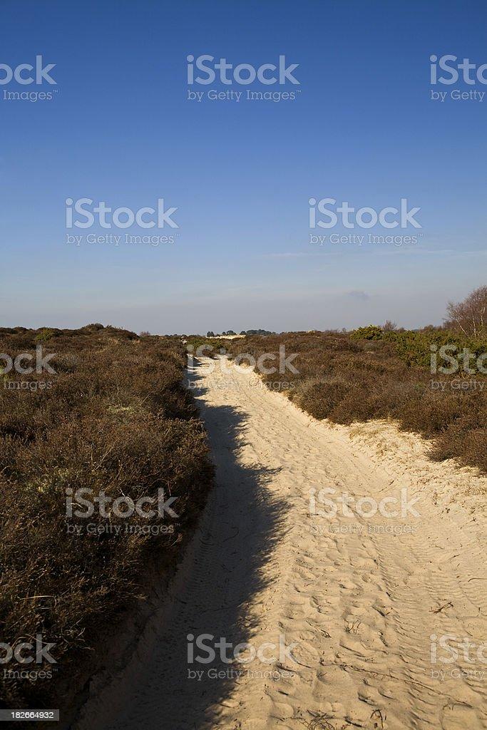 Sandbanks Beach stock photo