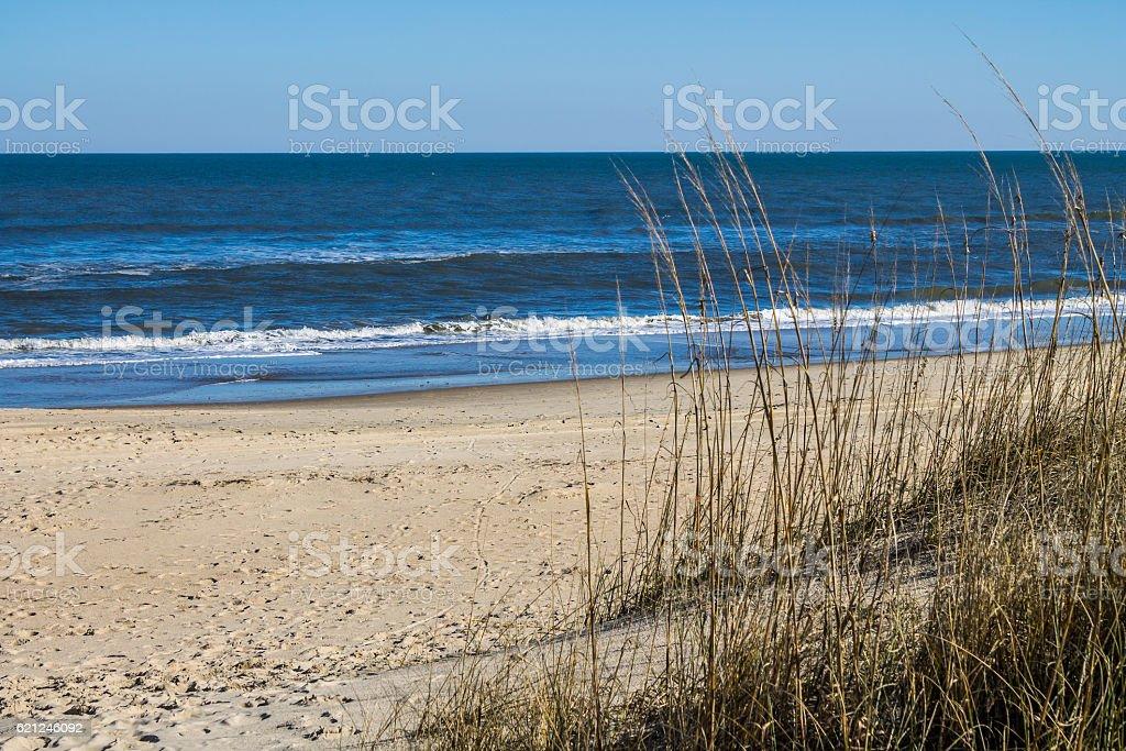 Sandbridge Beach in Virginia Beach, Virginia with Beach Grass stock photo