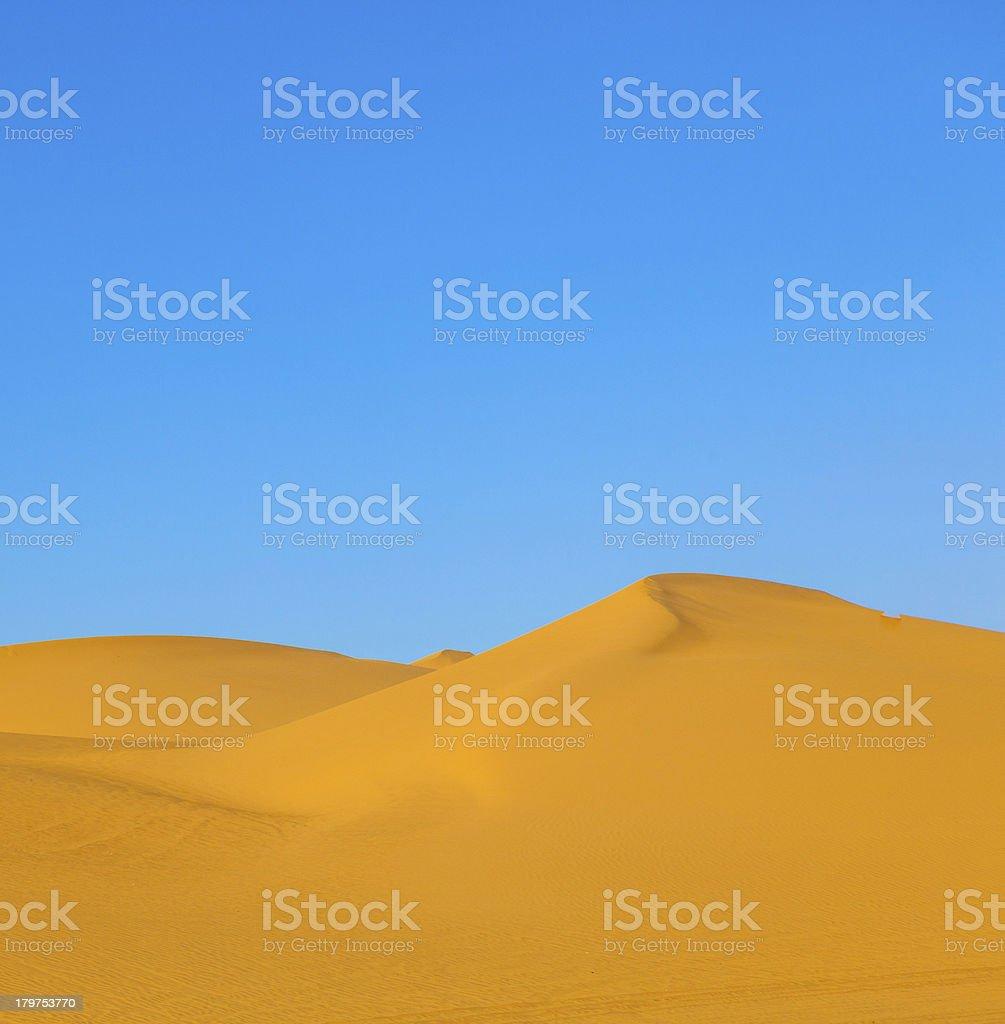 sanddune in the desert royalty-free stock photo
