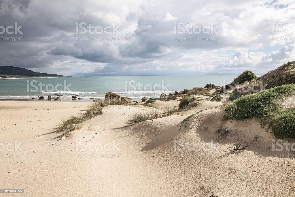 Sanddunes of Bolonia stock photo