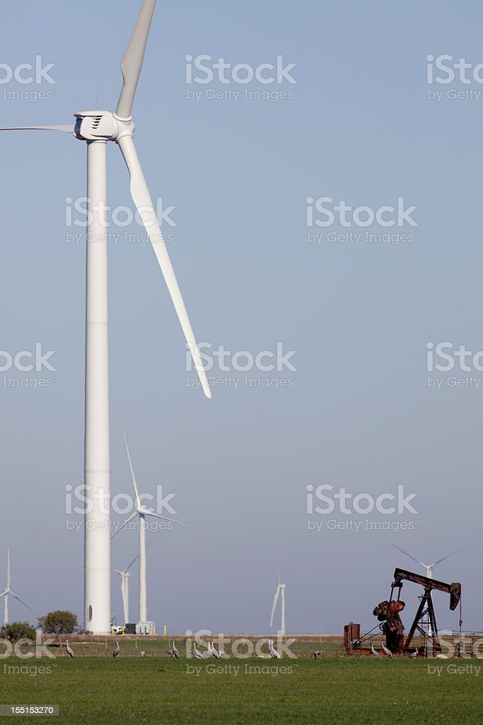 Sandhill cranes with oil derrick and wind farm Olney Texas stock photo