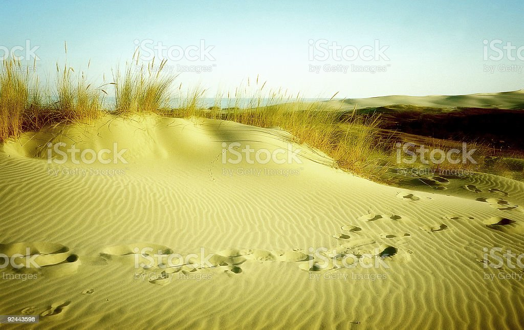 Sandhill with footprints stock photo
