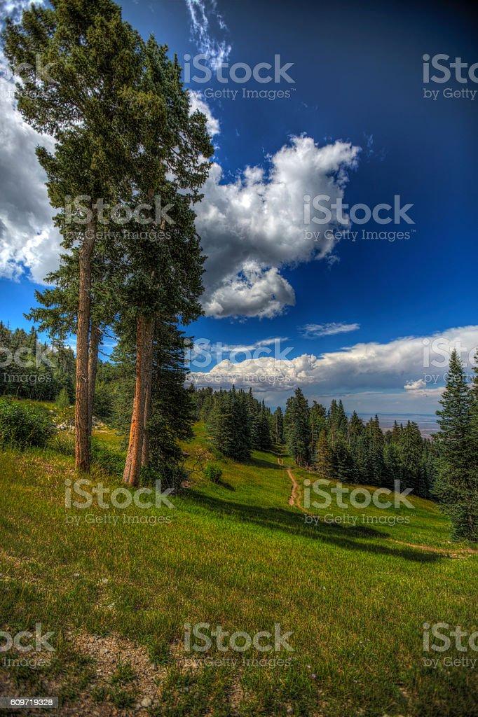 Sandia Peak Trails stock photo