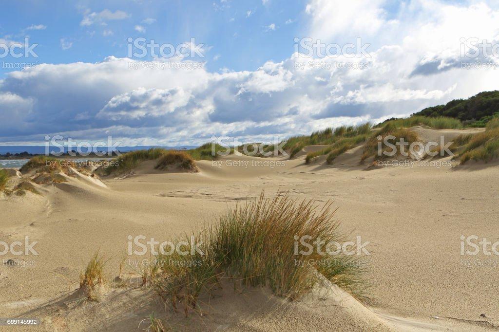 Sandpiper Beach, Tasmania, Australia stock photo