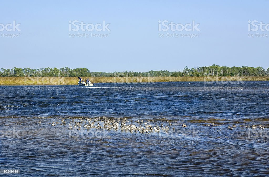 Sandpipers and Fishermen stock photo