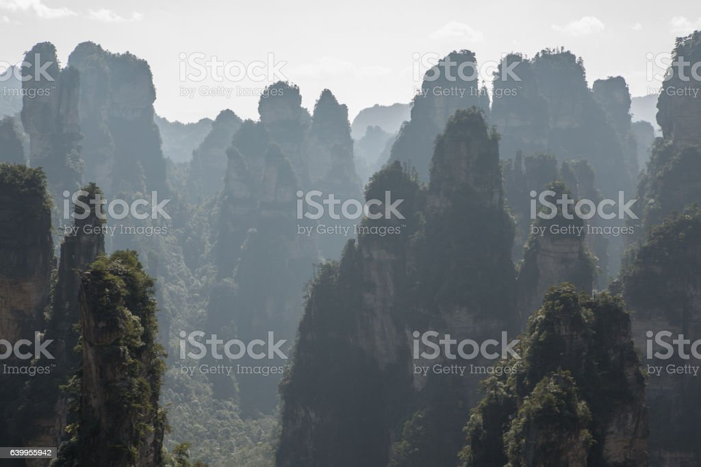 Sandstone pillars, Zhangjiajie National Forest Park, China stock photo