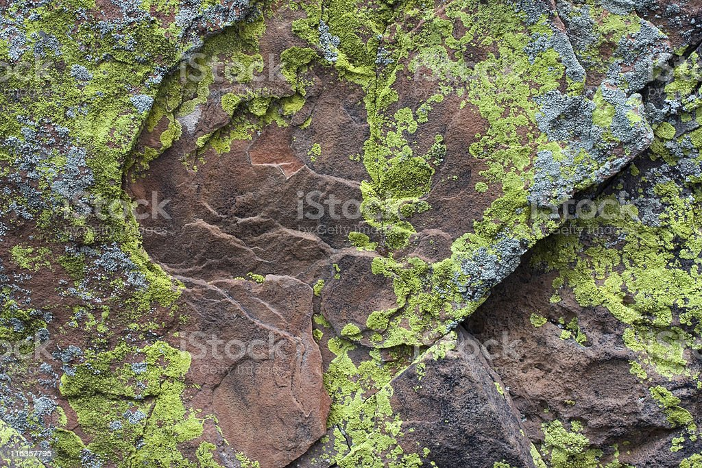 Sandstone rock with silver and green yellow lichen royalty-free stock photo