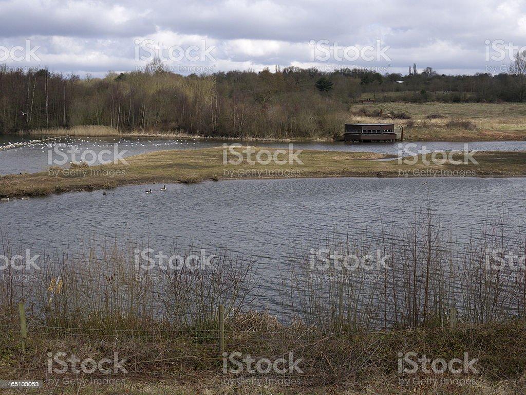 Sandwell RSPB reserve royalty-free stock photo
