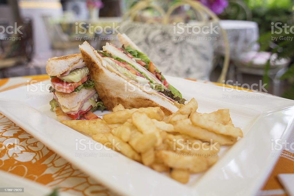 Sandwich with French Fries on a Plate royalty-free stock photo