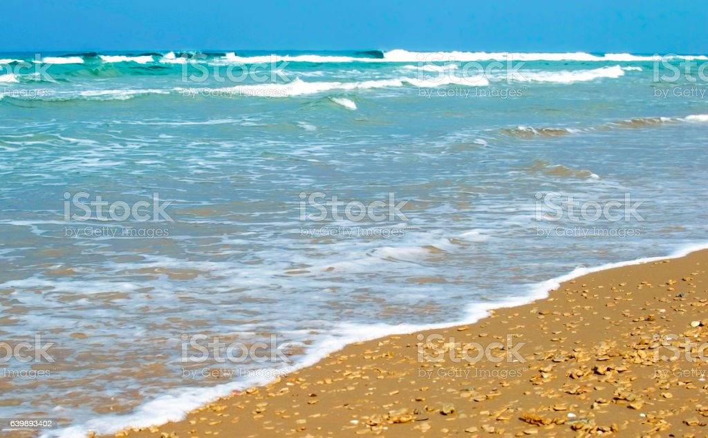 Sandy beach against the backdrop of sea stock photo