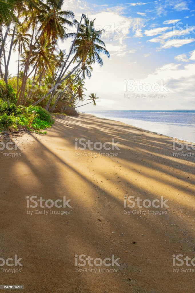 Sandy beach and palm trees in New Caledonia stock photo