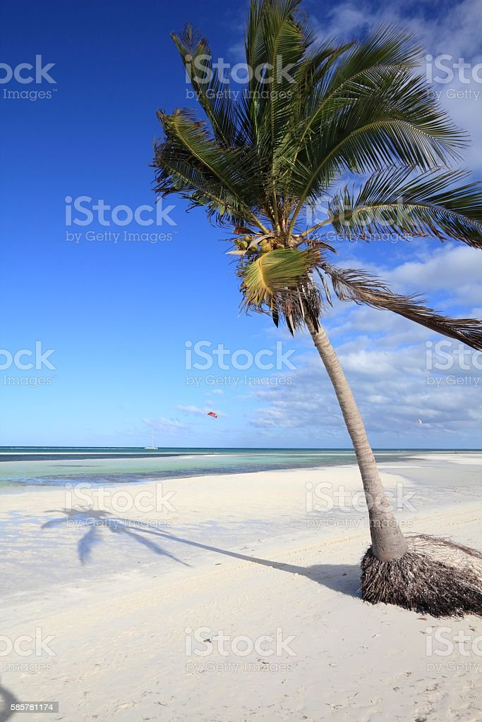 Sandy beach in Cuba stock photo