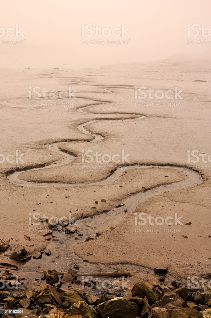 Sandy beach in the fog royalty-free stock photo