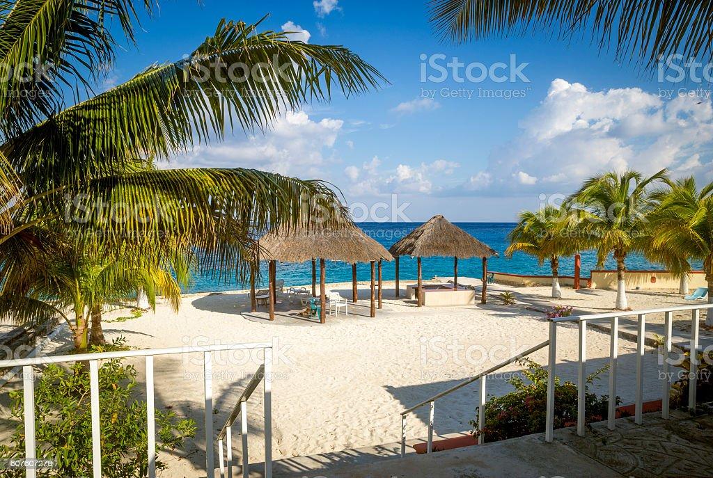 Sandy beach on Cozumel Island, Quintana Roo, Mexico stock photo
