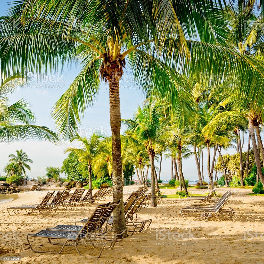 Sandy beach on the Sentosa island of Singapore stock photo
