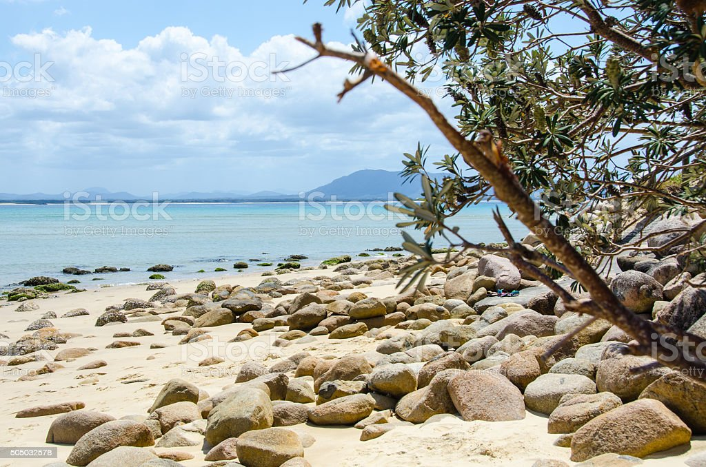 Sandy Beach with small stones and boughs stock photo