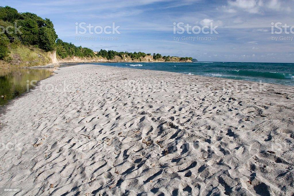 Sandy Caribbean Beach royalty-free stock photo