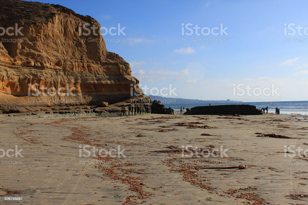 Sandy coast against cliffs with seaweed from the tide stock photo