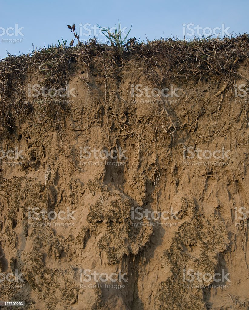 Sandy Cross-Section stock photo