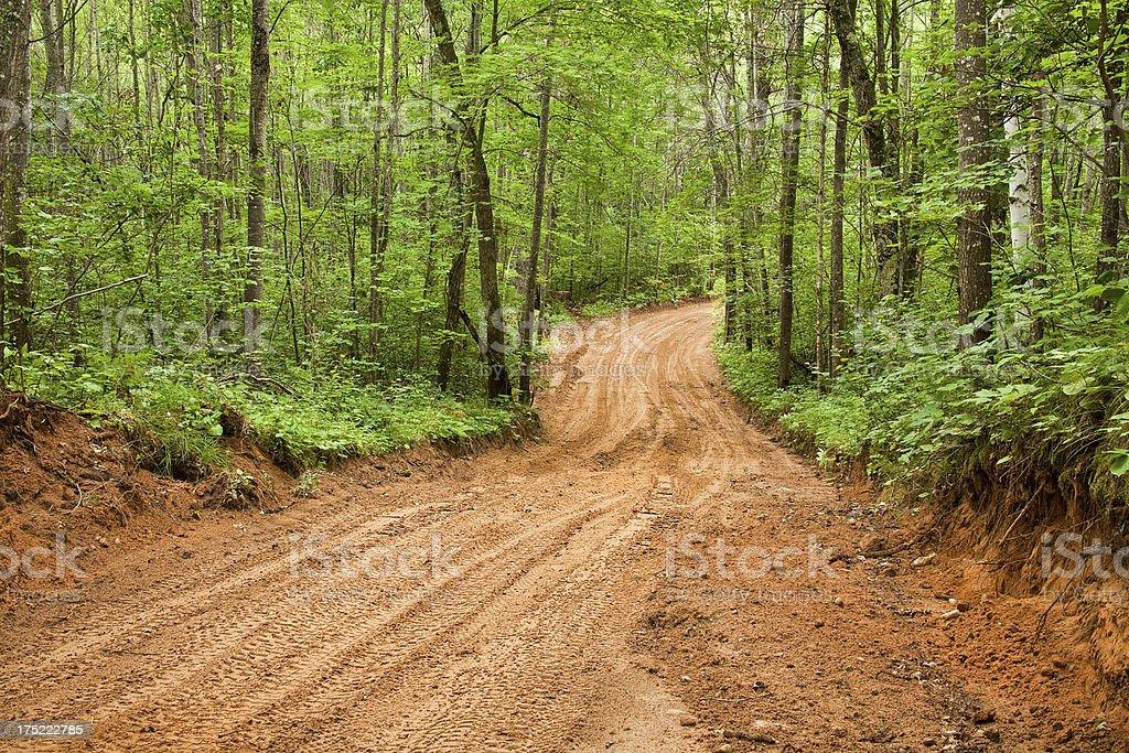 Sandy Dirt Road royalty-free stock photo
