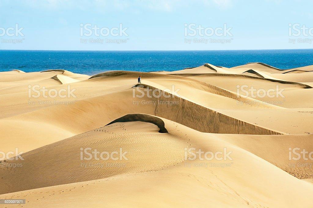 Sandy dunes stock photo