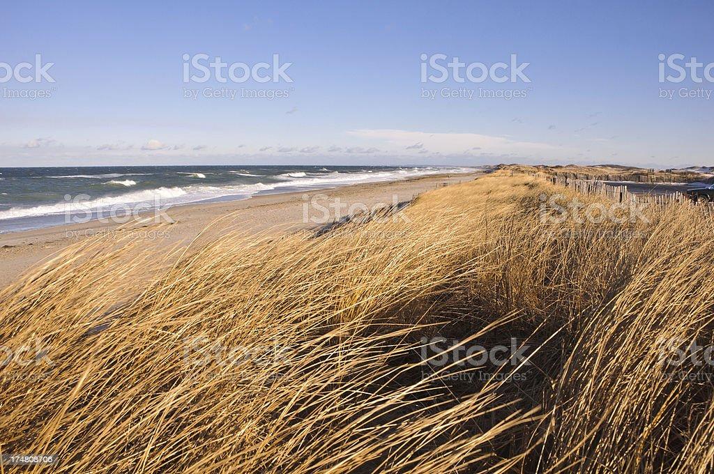 Sandy Neck Beach stock photo