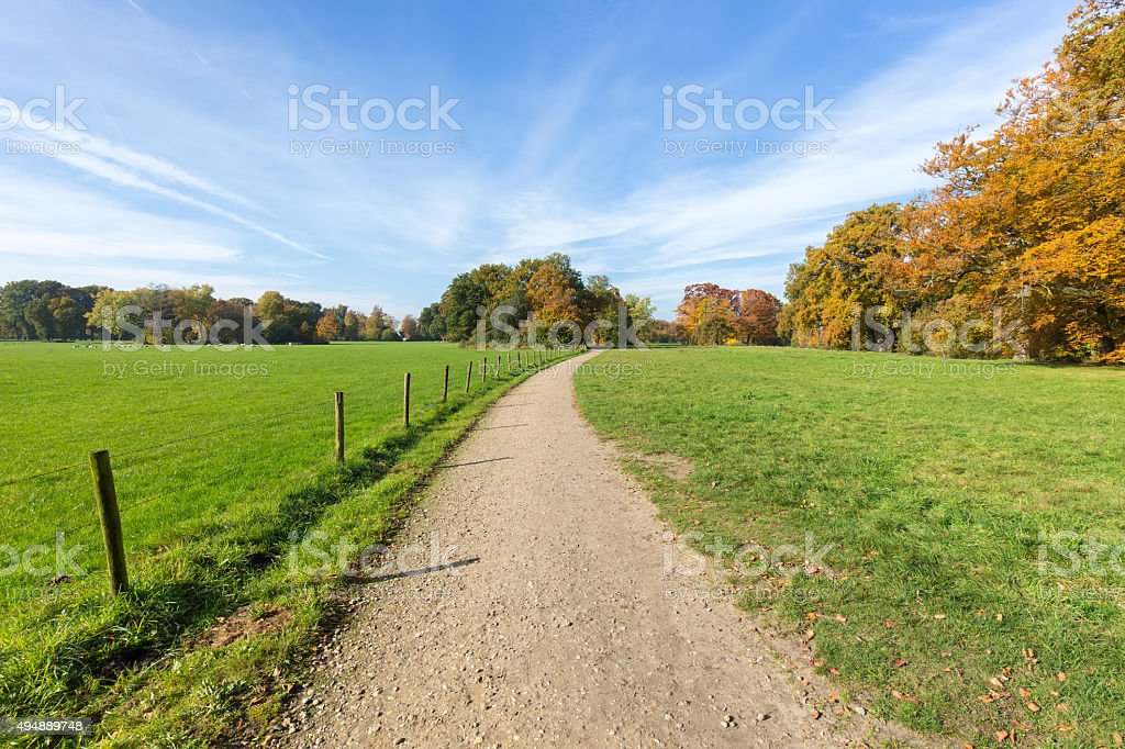 Sandy path between green meadows with autumn colors stock photo