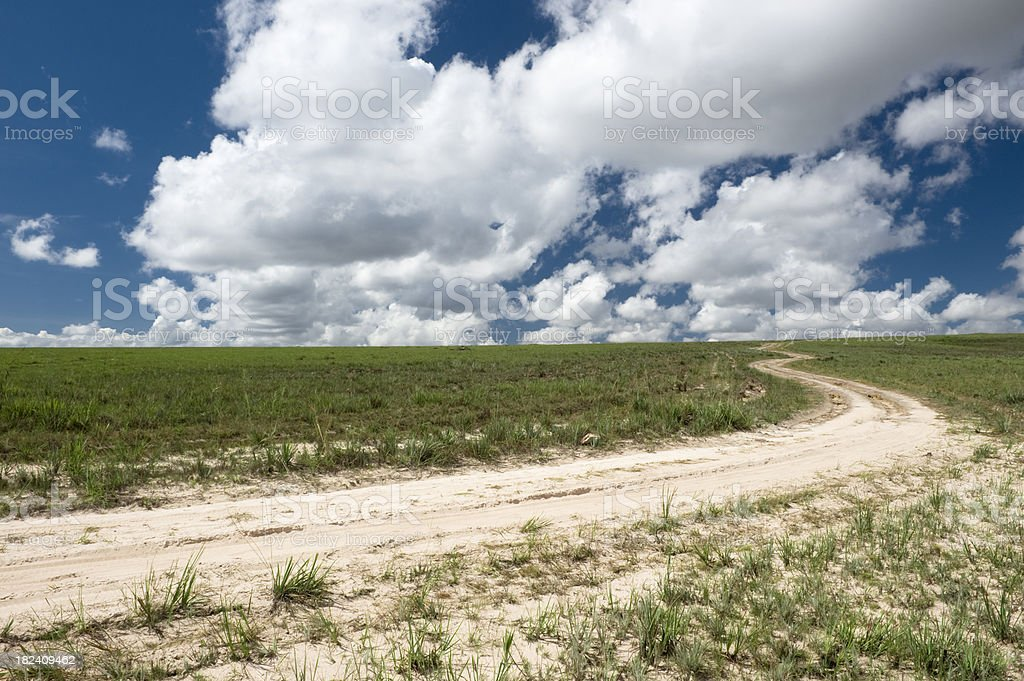 sandy road in the high savanna royalty-free stock photo