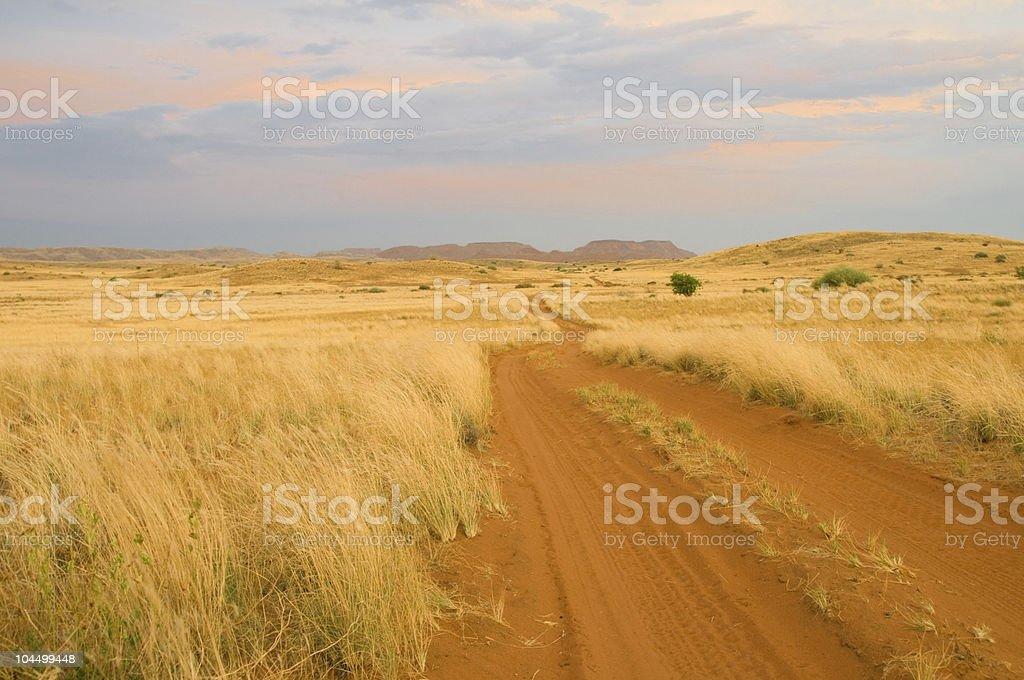 Sandy savanna road royalty-free stock photo