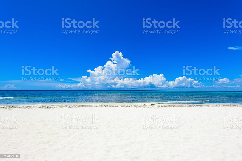 sandy sea beach stock photo