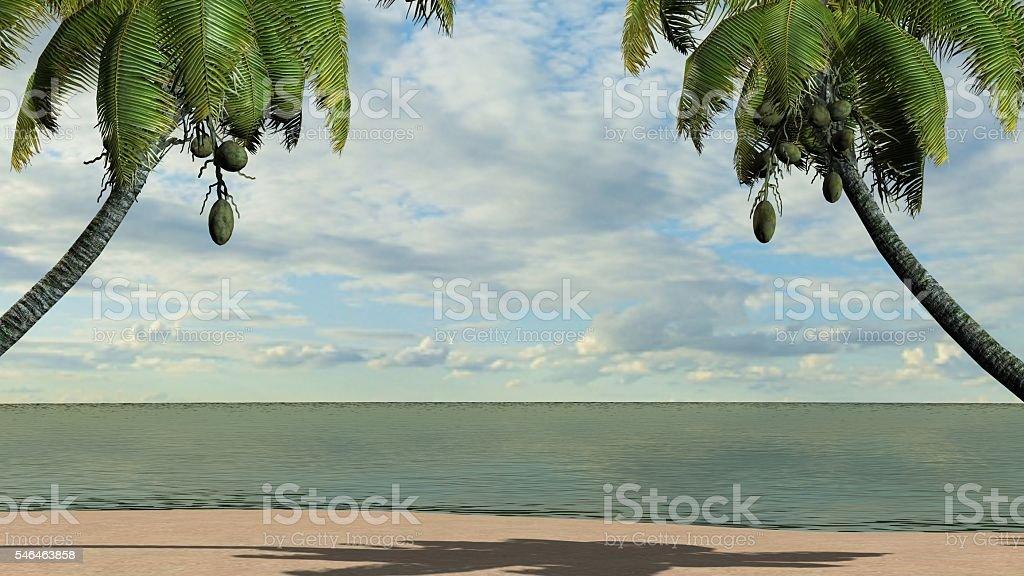 Sandy tropical beach stock photo