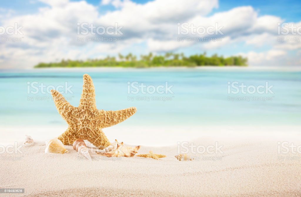Sandy tropical beach with island on background stock photo