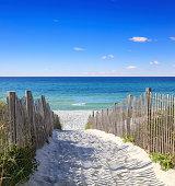 Sandy walkway leading to the beautiful Gulf Shore Beach
