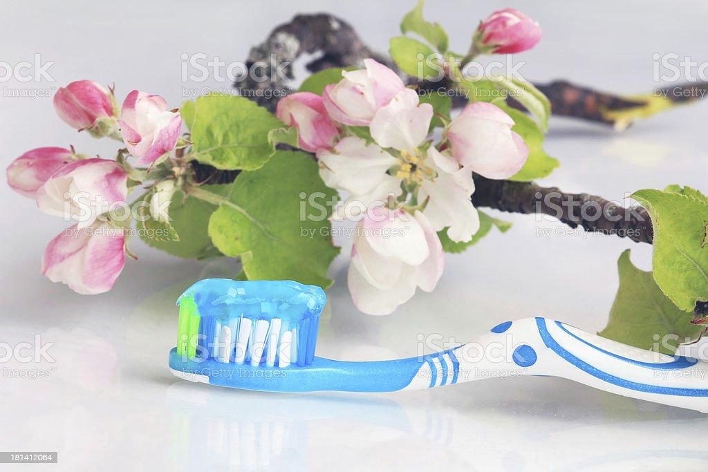 Sanfte Mundpflege stock photo