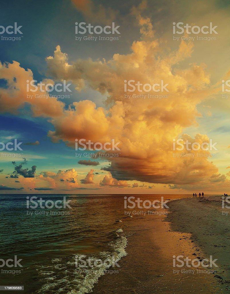 Sanibel Island beach stock photo