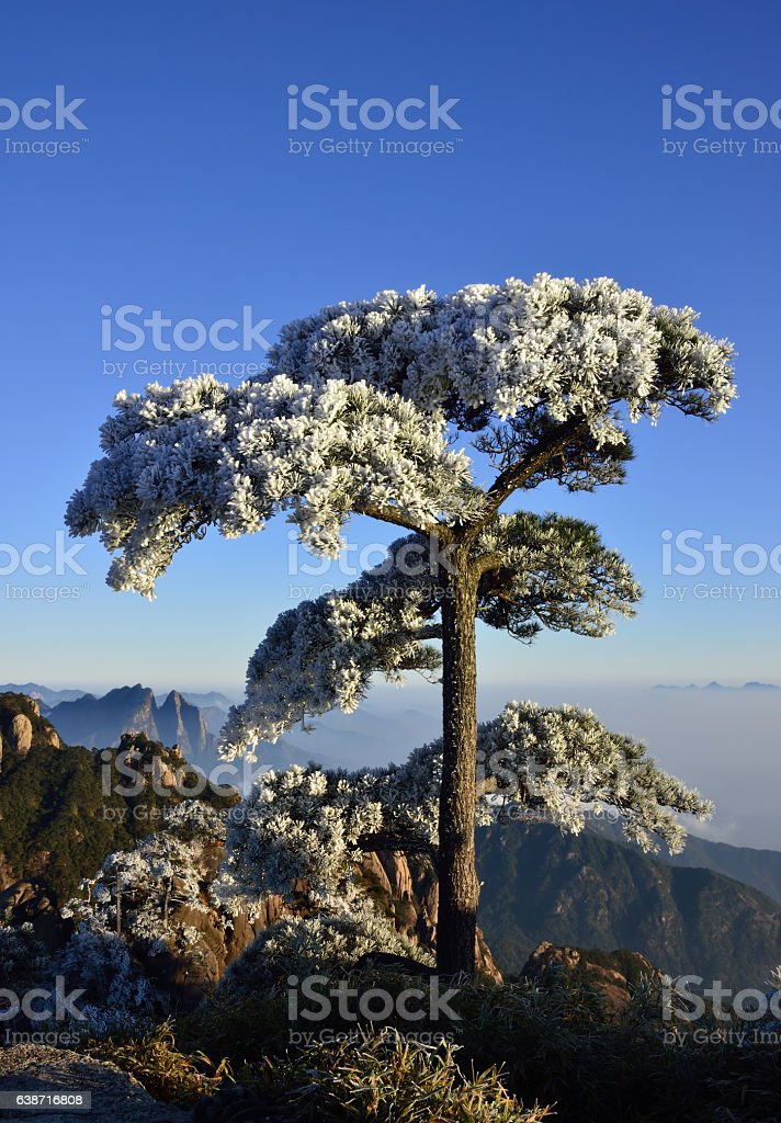Sanqingshan scenery,Jiangxi Province,China stock photo