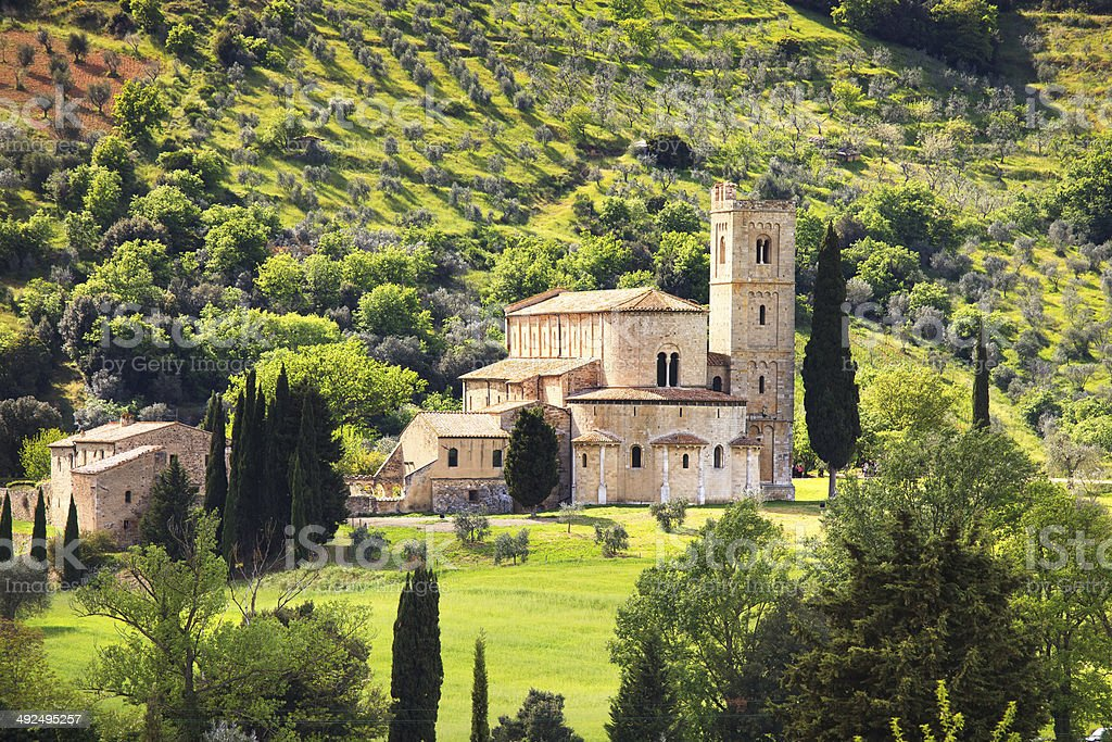 Sant Antimo Montalcino church and olive tree. Orcia, Tuscany, It royalty-free stock photo