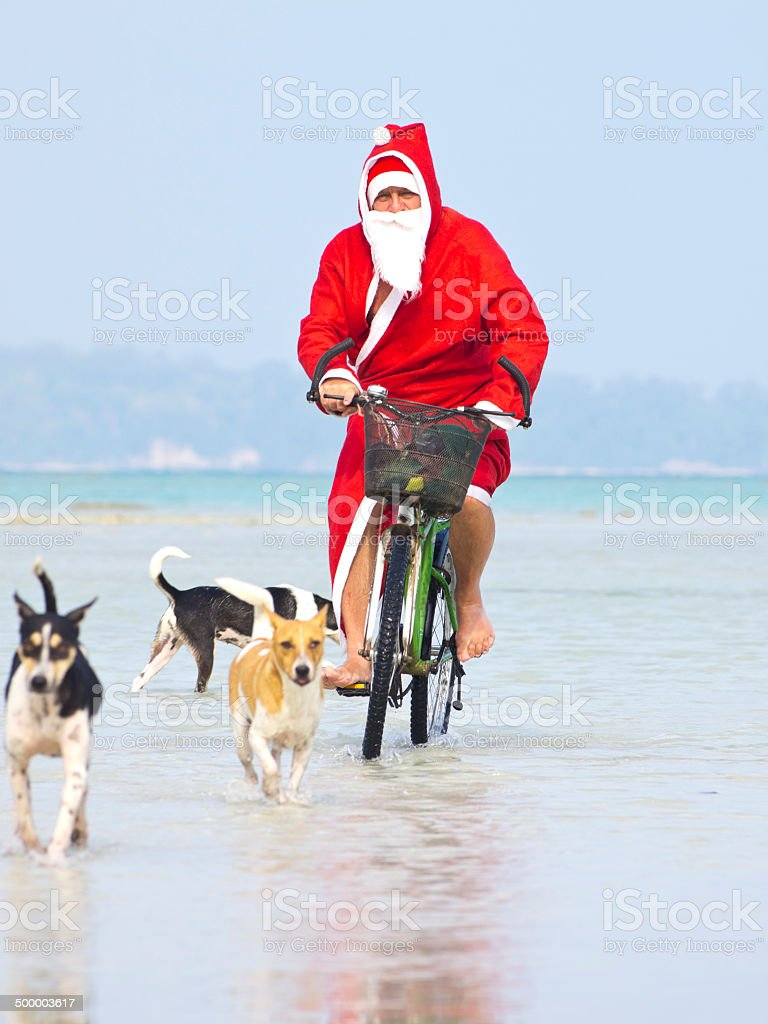 Santa and dogs royalty-free stock photo