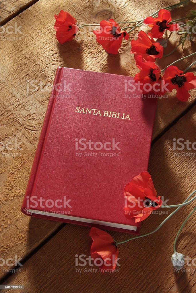 Santa Biblia Spanish for Holy Bible royalty-free stock photo