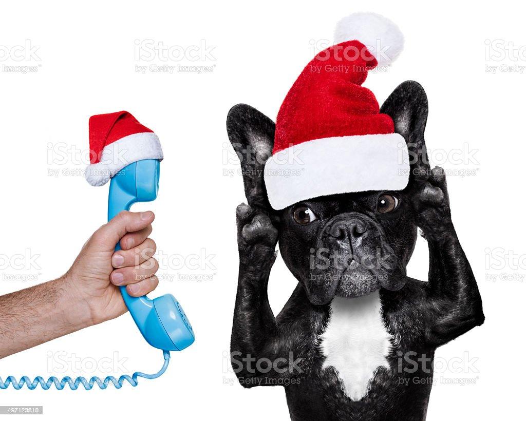 santa claus dog listening  to the phone stock photo