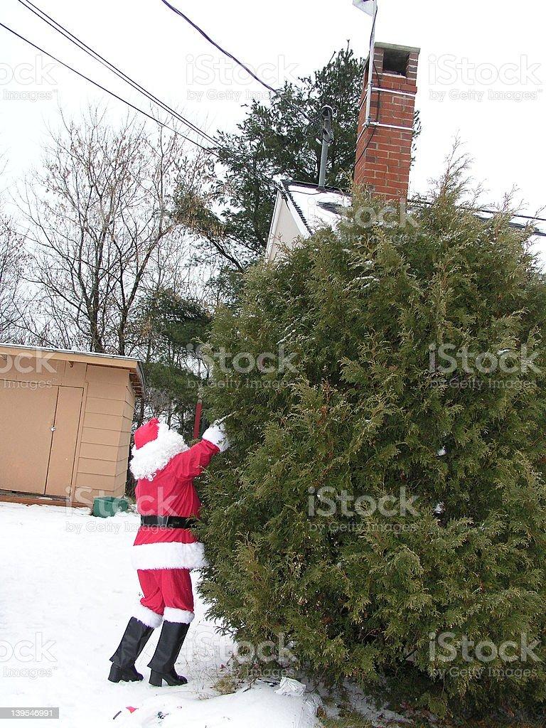 santa climbing the tree royalty-free stock photo