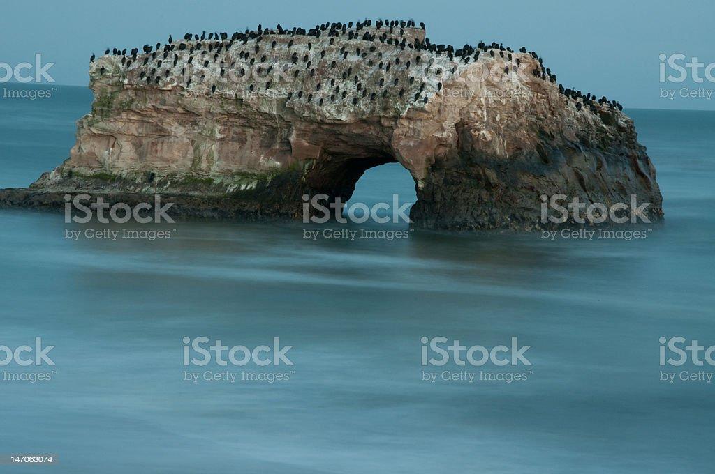 Santa Cruz Natural Bridges stock photo