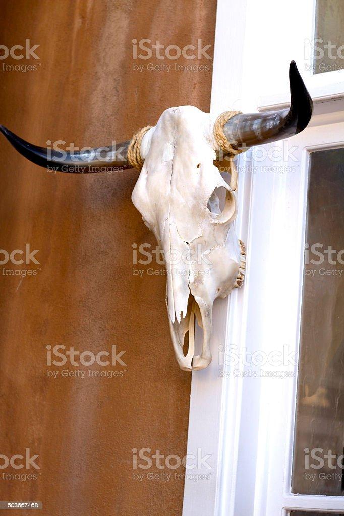 Santa Fe Style: Longhorn Cow Skull Hanging Near Adobe Wall stock photo
